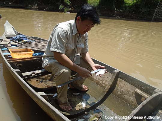 Research Activity on Fish Biological Characteristics along Pusat River
